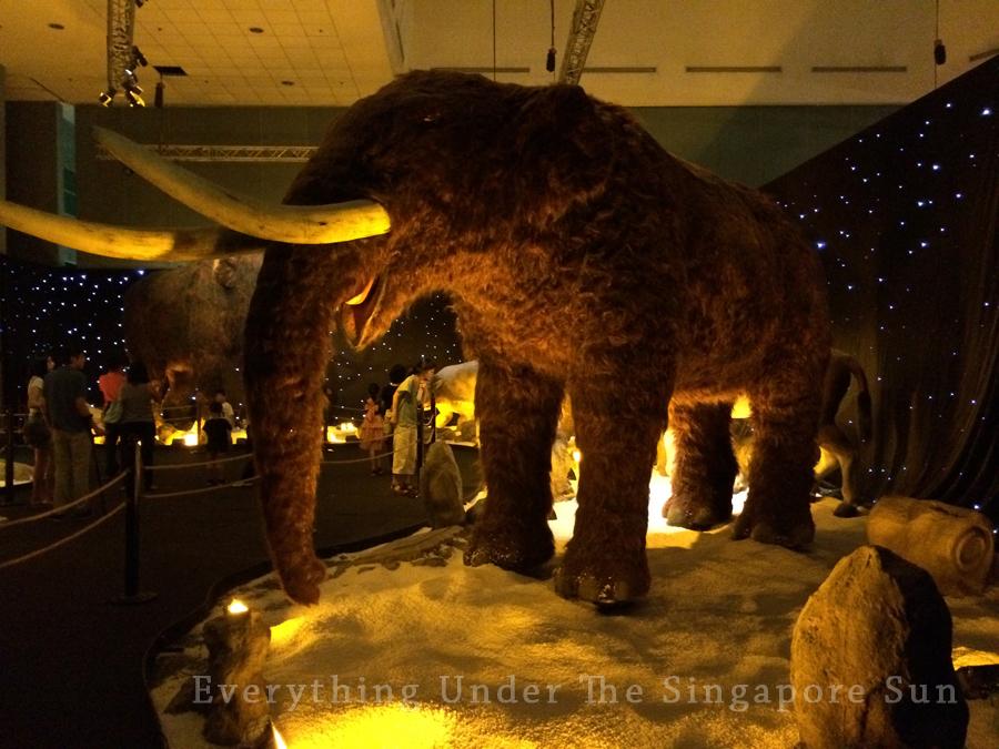 dinosaurs-science-center- (15)