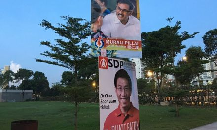 Types of Voters in Bukit Batok