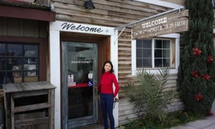 USA West Coast Trip – Day 8