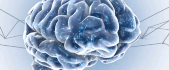 Brain Sparks