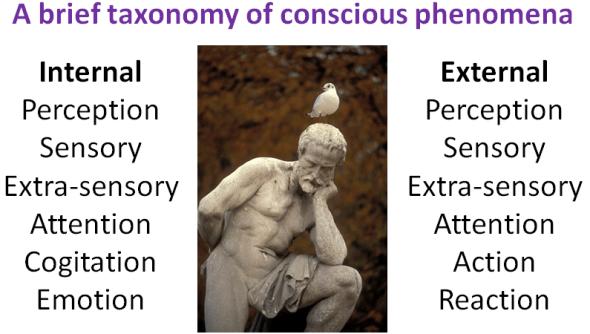 ConsciousTaxonomy