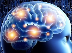 Brain Flow