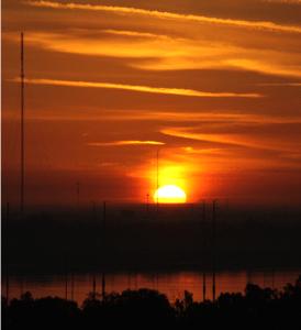 Dawn in Tampa