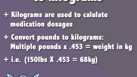 convert pounds to kilograms
