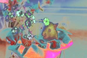 fancy pet rat with flowers