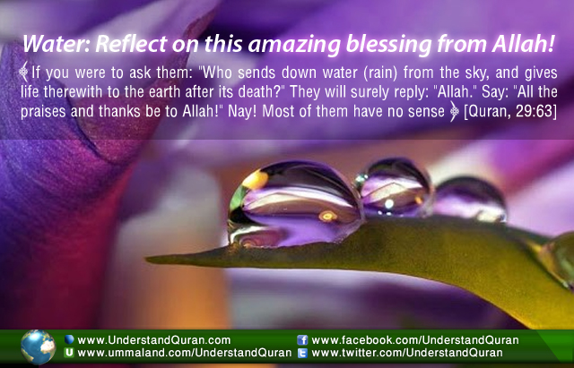 How to Remember Allah When You Drink a Glass of Water