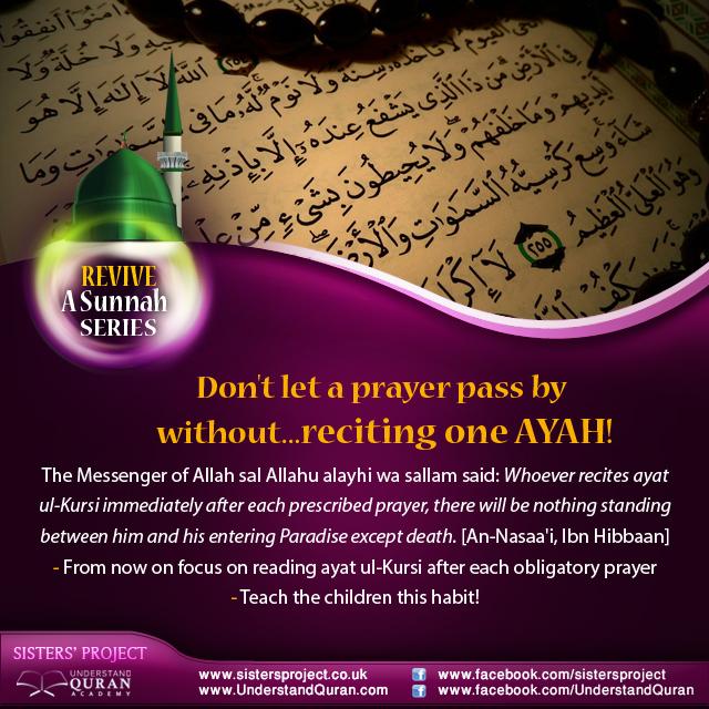 understand-quran-revive-a-sunnah-AYAH-Kursy