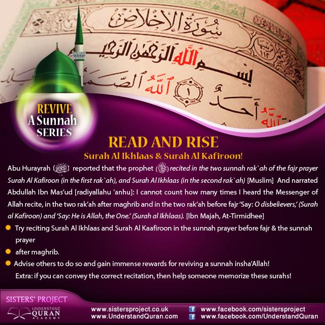 understand-quran-revive-a-sunnah-read