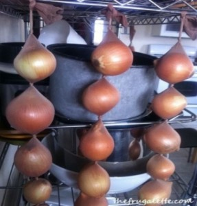 Storing onions in tights