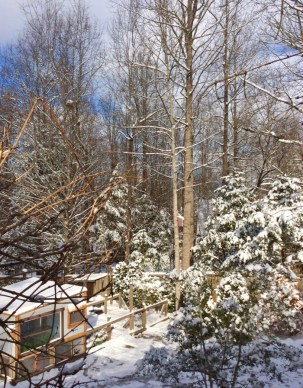 rachelle-and-wes-siegrist-snow-in-the-smokies5