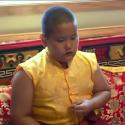 Little Lama chants