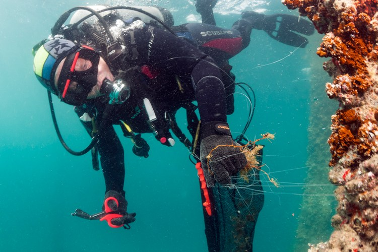 Diver with a pair of trauma shears