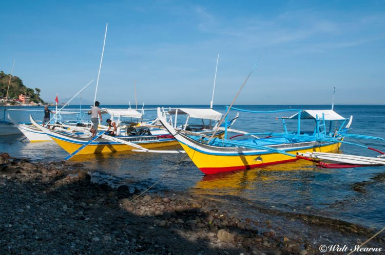 Grouping of dive bancas (Filipino style outrigger canoes with gas engines) line the beach at the ready to take divers out to explore Anilao's broad collection of dive sites.