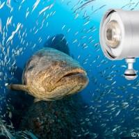Retra Prime Underwater Strobe
