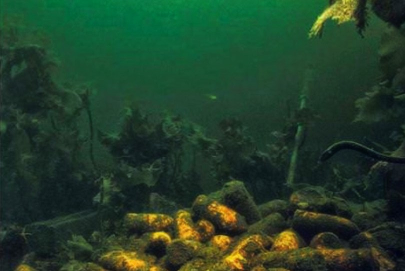 Underwater munitions dumped by many governments are killing our oceans.