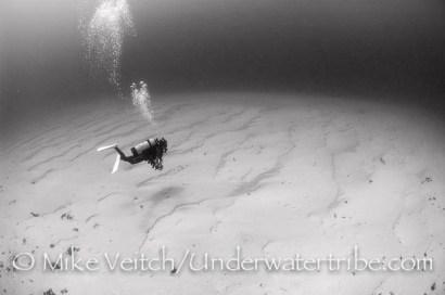 Diver on Sand in Black and White