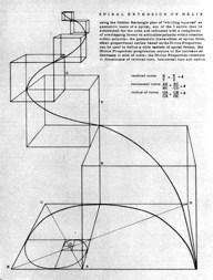 """Anne Tyng, """"Form finds Symmetry in Geometry,"""" Zodiac 19, 1969"""
