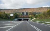 Flora Ruchat-Roncati, Estructuras de concreto en la Autopista Transjurana