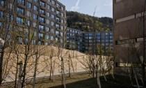 María Viñé, Martina Voser, (vivo.architektur.landschaft gmbh). María Viñé, Martina Voser, (vivo.architektur.landschaft gmbh). Desarrollo de viviendas Triemli, Albisrieden, Zurich, 2006-2012.