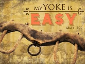 My Yoke