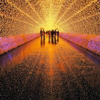 Festival de Luces de invierno en Japón y Nagashima Park