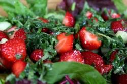Erdbeer-Melisse-Babyspinat-Salat12