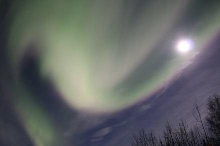 Jingjing traveled to Alaska to see the northern lights!
