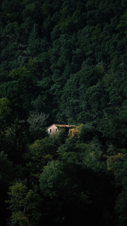 Catalogne/ Montseny