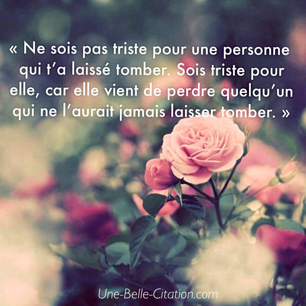 Ne sois pas triste pour une personne qui t'a laissé tomber. Sois triste pour elle, car elle vient de perdre quelqu'un qui ne l'aurait jamais laisser tomber
