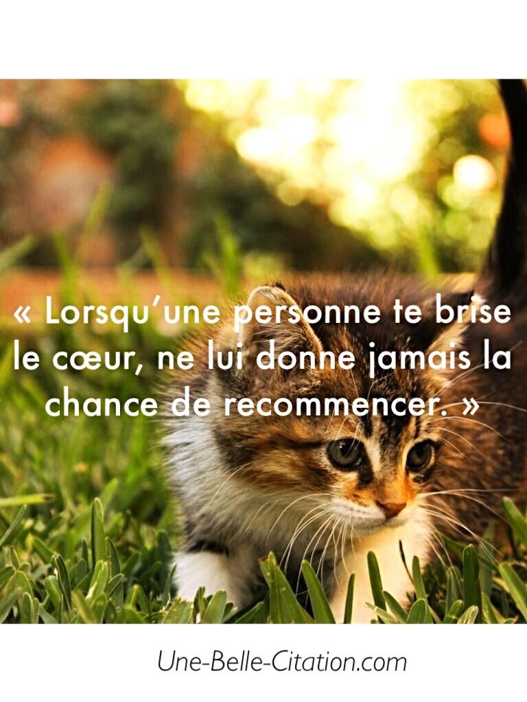 «Lorsqu'une personne te brise le cœur, ne lui donne jamais la chance de recommencer. »