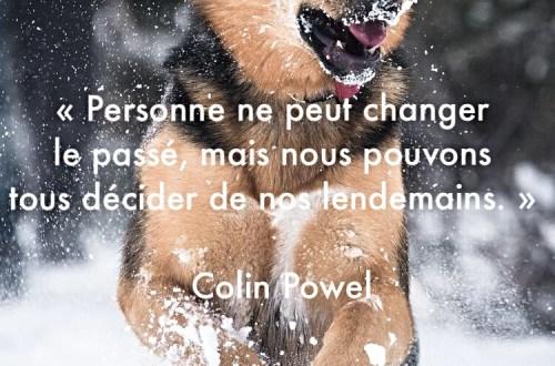 « Personne ne peut changer le passé, mais nous pouvons tous décider de nos lendemains. »