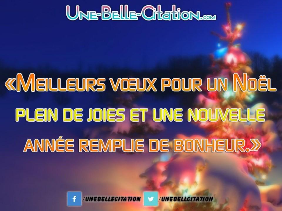 «Meilleurs vœux pour un Noël plein de joies et une nouvelle année remplie de bonheur.»