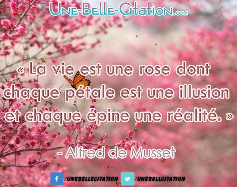 « La vie est une rose dont chaque pétale est une illusion et chaque épine une réalité. »