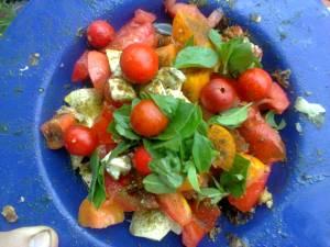 assiette bleue contenant des tomates, du basilic, frais du jardin
