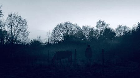 il faut partir pour vivre : silhouette humaine et équine dans la brume bleutée