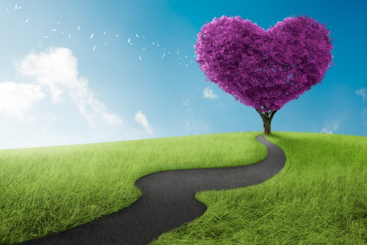 rencontre amour s'aimer