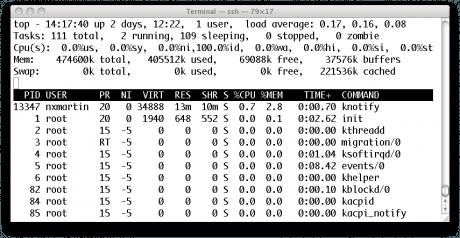 """""""top"""" d'une session KDE sur RPS-1 (OVH)"""