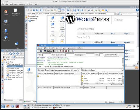 Visuel d'une session KDE sur RPS-1 (OVH)