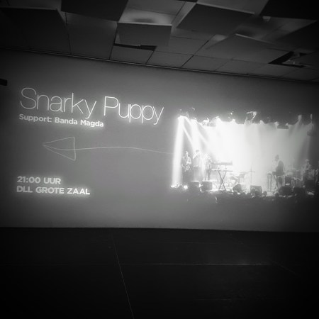 Snarky Puppy hall