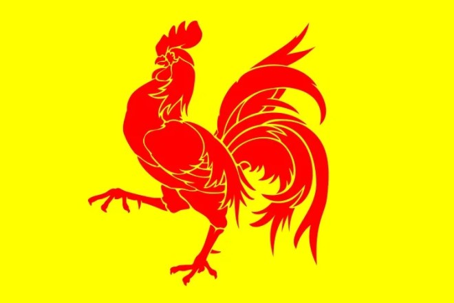 drapeau wallon