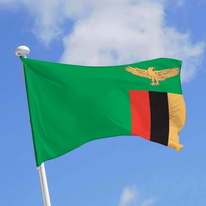 drapeau zambie