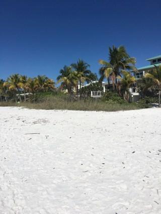 plage (3)
