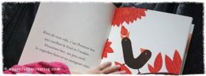 Nos livres préférés sur les oiseaux