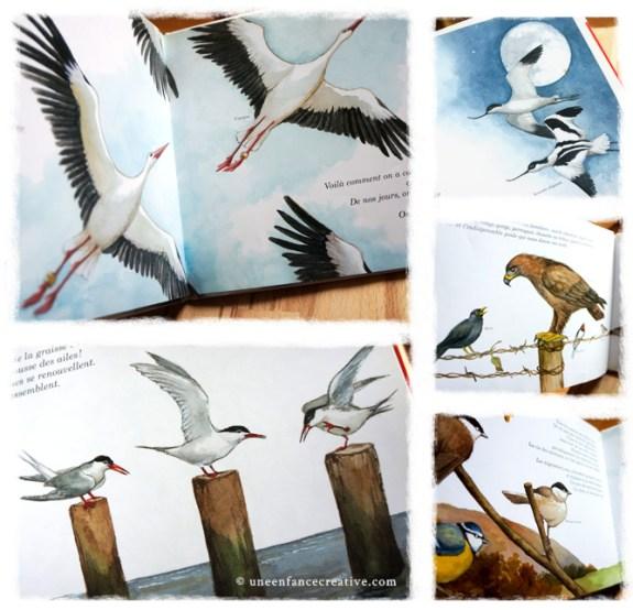 Extraits du livre À vol d'oiseau