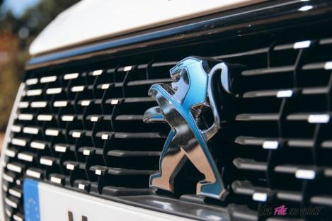 Essai Peugeot e-208 2019 logo lion détail calandre
