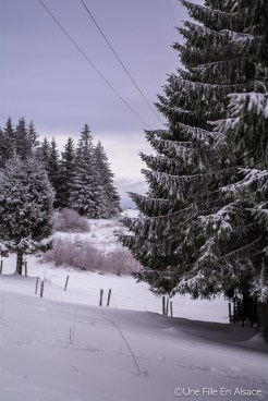 lac_blanc-48
