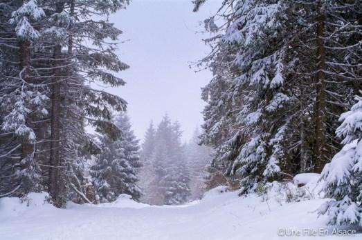 lac_blanc-5
