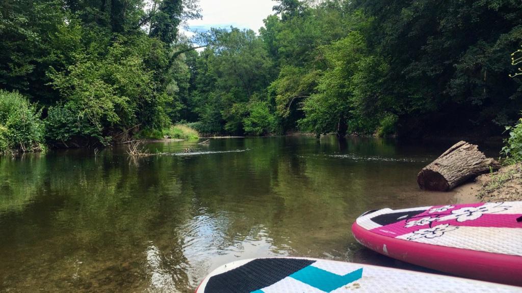 Stand Up Paddle dans la Réserve Naturelle de l'Illwald