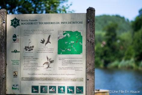 Rochers et tourbières des Vosges du Nord