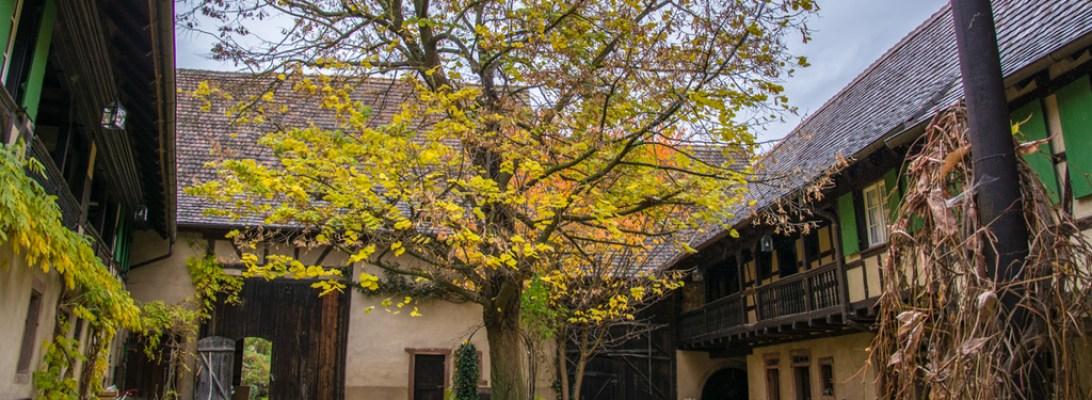 Chambres d'hôtes Unter Der Linde - Photo Céline Schnell - Une Fille En Alsace